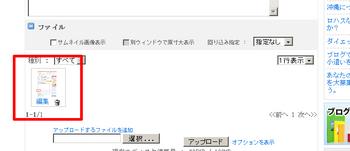 newfile_05.jpg
